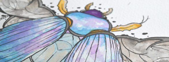 cropped-beetle-22.jpg