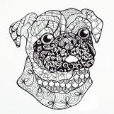 Project Pattern Pug