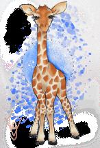 giraffe-1